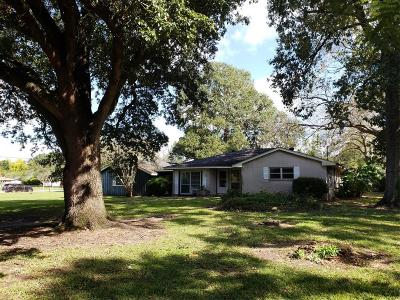 Alvin Single Family Home For Sale: 401 Main St County Road 156