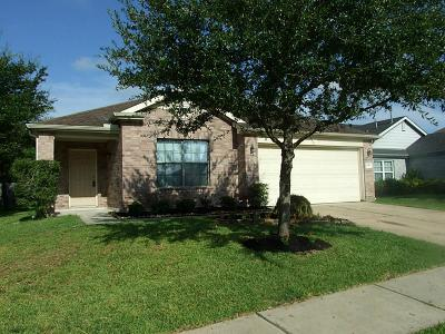 Tomball Single Family Home For Sale: 19803 Rippling Brook Lane