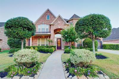Sugar Land Single Family Home For Sale: 1122 Coleridge Street