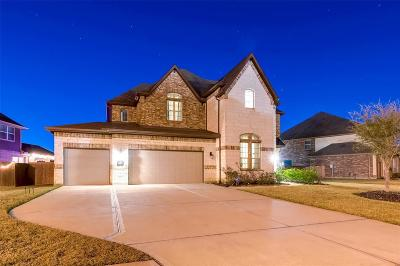 Katy Single Family Home For Sale: 4003 Graham Heights Lane