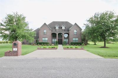 Bay City Single Family Home For Sale: 199 County Road 397