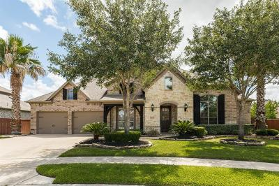Manvel Single Family Home For Sale: 4123 Sage Brush Court