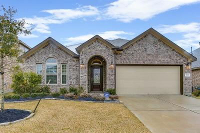 Katy Single Family Home For Sale: 3819 Cactus Field Lane