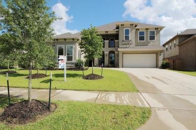 Houston Single Family Home For Sale: 13215 Whisper Hollow Lane