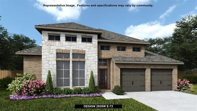 Fulshear Single Family Home For Sale: 3802 Lake Falls Drive