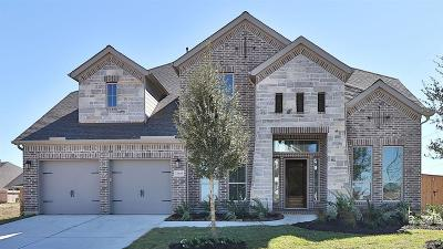 Pearland Single Family Home For Sale: 13608 Aspen Ridge Lane
