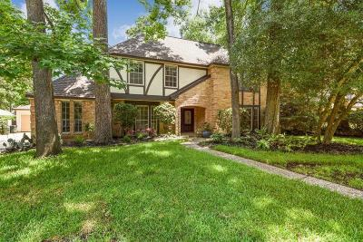 Houston Single Family Home For Sale: 3415 Tree Lane