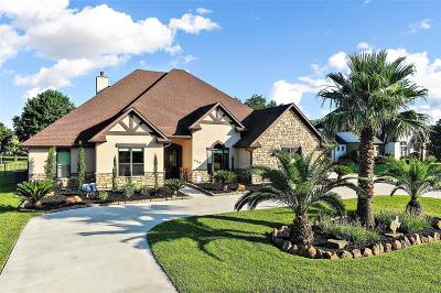 Fulshear Single Family Home For Sale: 5319 Weston Drive