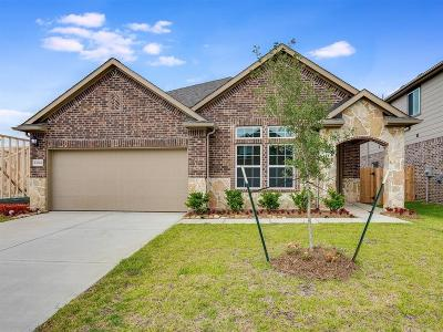 Houston Single Family Home For Sale: 12614 Bruce Summers Place