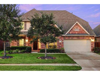 Friendswood Single Family Home For Sale: 1214 Abigail Lane