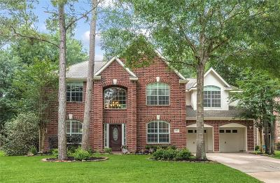 Houston Single Family Home For Sale: 3003 Laurel Mist Court