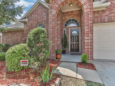 Pearland Single Family Home For Sale: 2314 Diamond Springs Drive