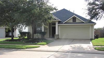 Tomball Single Family Home For Sale: 18839 Magnolia Arbor Lane