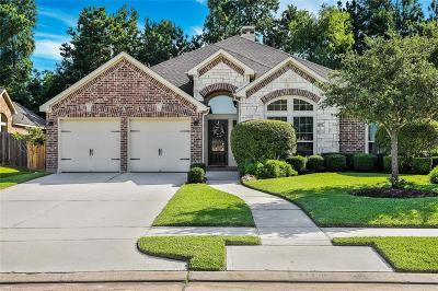Spring Single Family Home For Sale: 28338 Shining Creek Lane