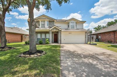 Houston Single Family Home For Sale: 10818 Great Bridge Drive