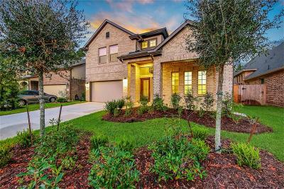 Montgomery Single Family Home For Sale: 155 Capriccio Lane