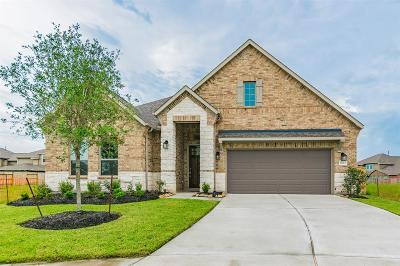 Rosharon Single Family Home For Sale: 4823 Timber Gate Court