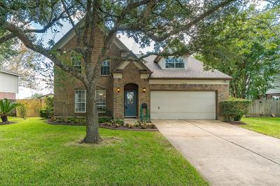 Pearland Single Family Home For Sale: 5008 Spring Branch Drive