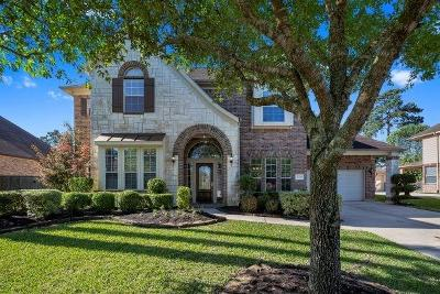 Porter Single Family Home For Sale: 20708 Rumsey Springs Drive