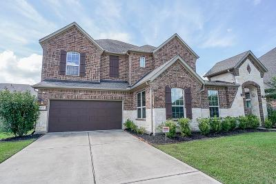 Riverstone Single Family Home For Sale: 4611 Monarch Bluff Court