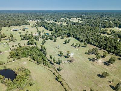 Conroe Farm & Ranch For Sale: 10171 Ehlers