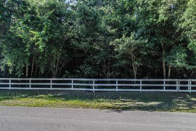 Conroe Residential Lots & Land For Sale: 10325 Paradise Valley