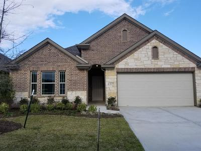 Balmoral Single Family Home For Sale: 12331 Sabine Point Drive