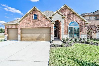 Conroe Single Family Home For Sale: 16714 East Whimbrel