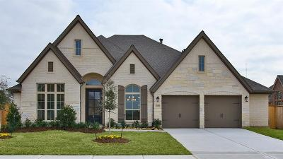 Tomball Single Family Home For Sale: 21410 Martin Tea Trail