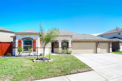 Manvel Single Family Home For Sale: 24 Coconut Palms Court