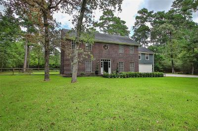 Magnolia Single Family Home For Sale: 33408 Alton Wright Drive