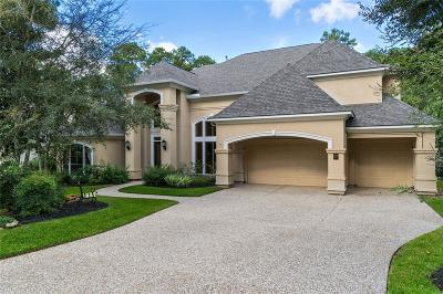 The Woodlands Single Family Home For Sale: 87 N Hunters Crossing Circle