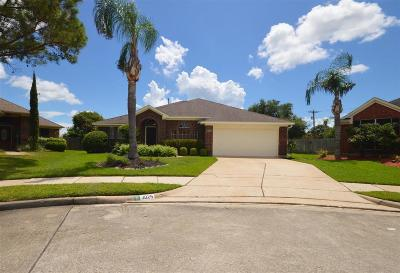 League City Single Family Home For Sale: 3025 Quill Meadow Drive