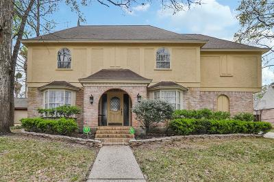 Houston Single Family Home For Sale: 1919 Big Horn Drive