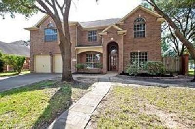 Houston Single Family Home For Sale: 11239 Silver Rush Drive