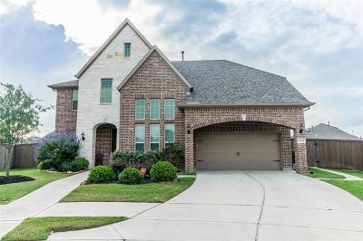 Katy Single Family Home For Sale: 23714 Oakdale Cliff Court