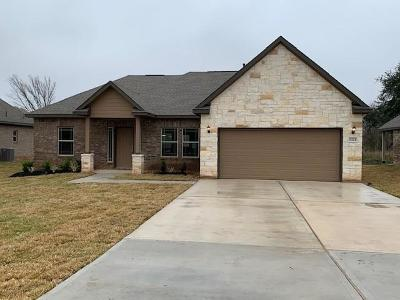 Angleton Single Family Home For Sale: 1321 Gifford Road