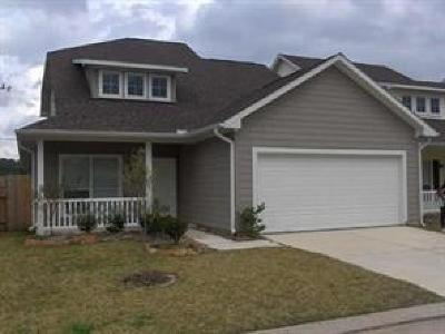 Tomball Single Family Home For Sale: 21310 Berry Vine Street