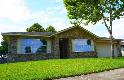 Houston Single Family Home For Sale: 11042 Heather Trail Drive Drive