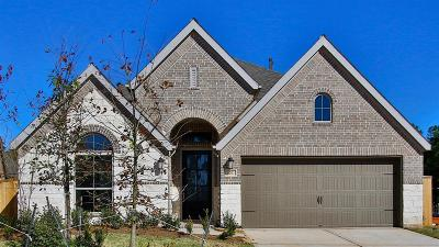 Conroe Single Family Home For Sale: 241 Trillium Park Loop