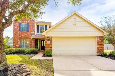 Katy Single Family Home For Sale: 20407 Cisco Hill Court