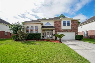 Houston Single Family Home For Sale: 8007 Ranic Drive