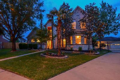 Houston Single Family Home For Sale: 8503 Calverton Pines Lane