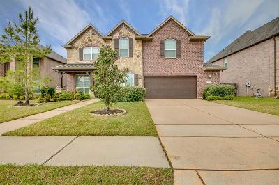Pearland Single Family Home For Sale: 3022 Rocky Canyon Drive