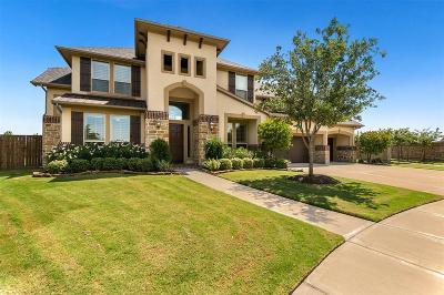 Single Family Home For Sale: 3435 Limestone Sky Court