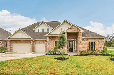 Fulshear Single Family Home For Sale: 32815 Waterfowl Drive