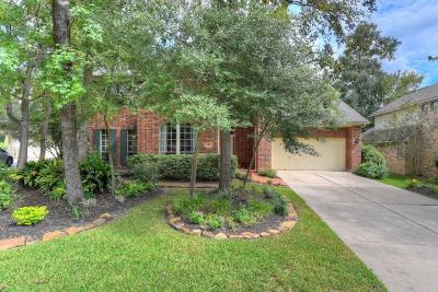 The Woodlands Single Family Home For Sale: 47 Dove Trace Circle