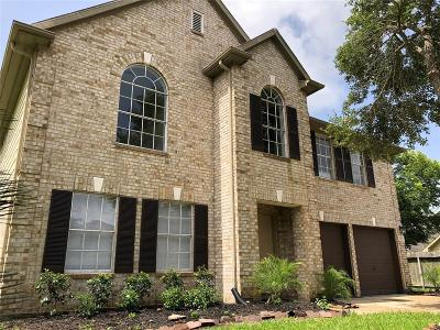 Sugar Land Single Family Home For Sale: 3307 Mulligan Court