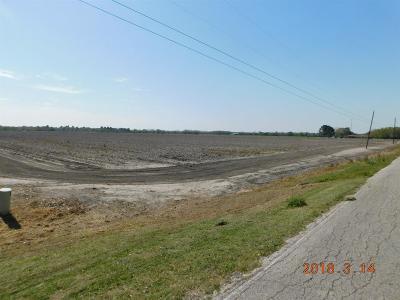 Fort Bend County Farm & Ranch For Sale: Pleak Road Road