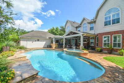 Sugar Land Single Family Home For Sale: 11 Amberstone Drive